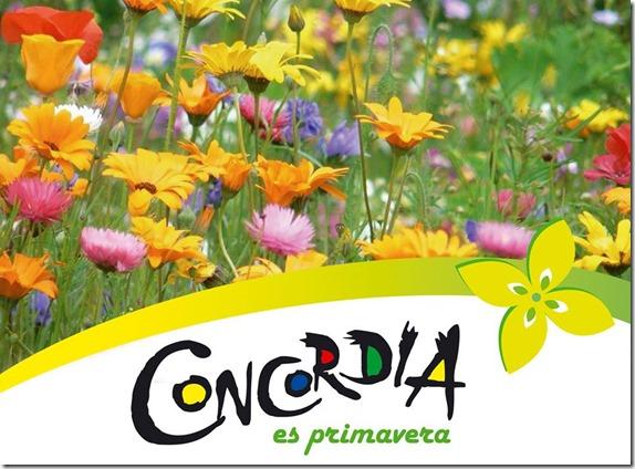 Concordia 2