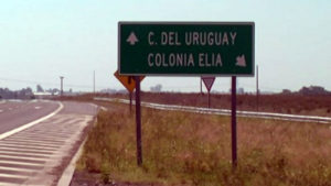 C Elia